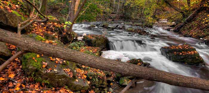 Fall is a wonderful time to enjoy shopping, dining, and the wonderful sights in Abington, Montgomery County PA