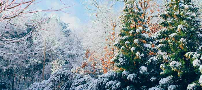 winter is a wonderful time to enjoy shopping, dining, and the wonderful sights in Abington, Montgomery County PA